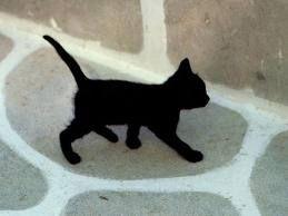 fekete cica.jpg fekete cica2.jpg ... 1c90fbbf97